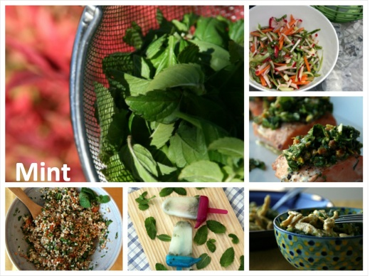 InspiringIngredient_Mint_2013.08